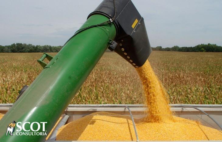 Aumento das exportações brasileiras de milho