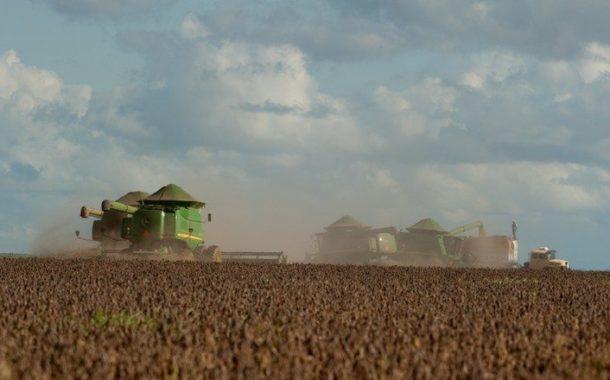 Área plantada de soja deve crescer 3% na próxima safra, diz Céleres