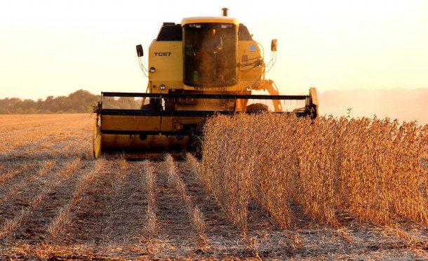 Balança comercial de MS fecha semestre com forte aumento, destaques para celulose e soja
