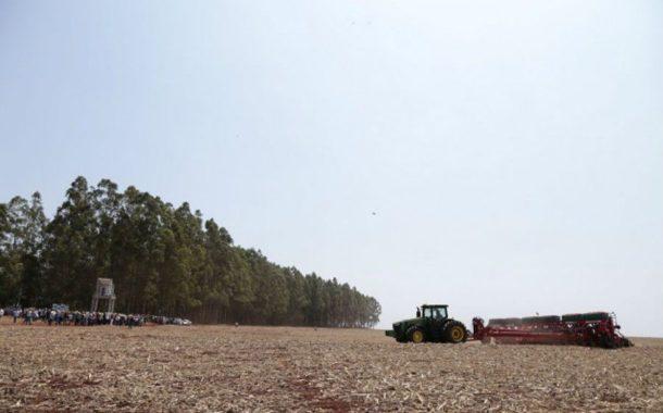 Plantio de soja no Brasil avança com tempo favorável