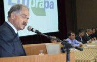 Novo presidente da Embrapa tomará posse nesta quarta
