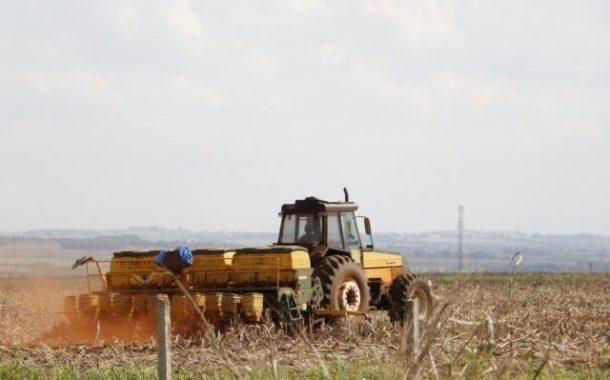 Mato Grosso do Sul já terminou plantio da soja em 97% da lavoura