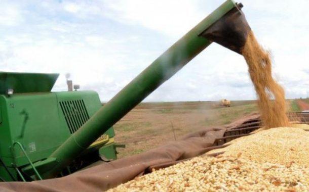 IBGE prevê safra de grãos 1,7% maior no próximo ano