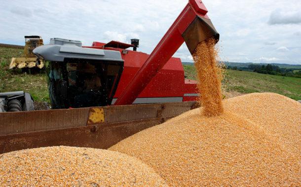 Exportações de milho disparam em janeiro