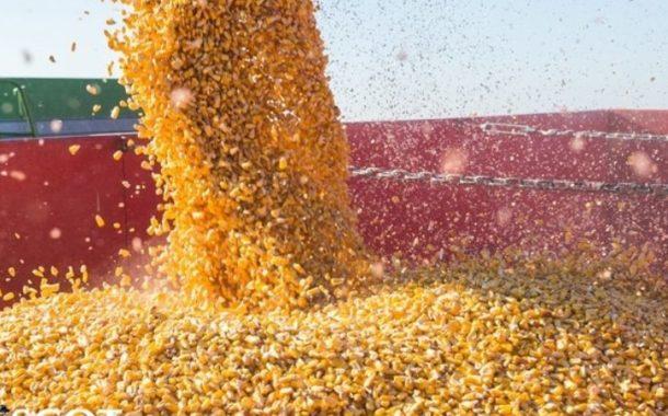 Safra brasileira de grãos pode crescer 4,2%