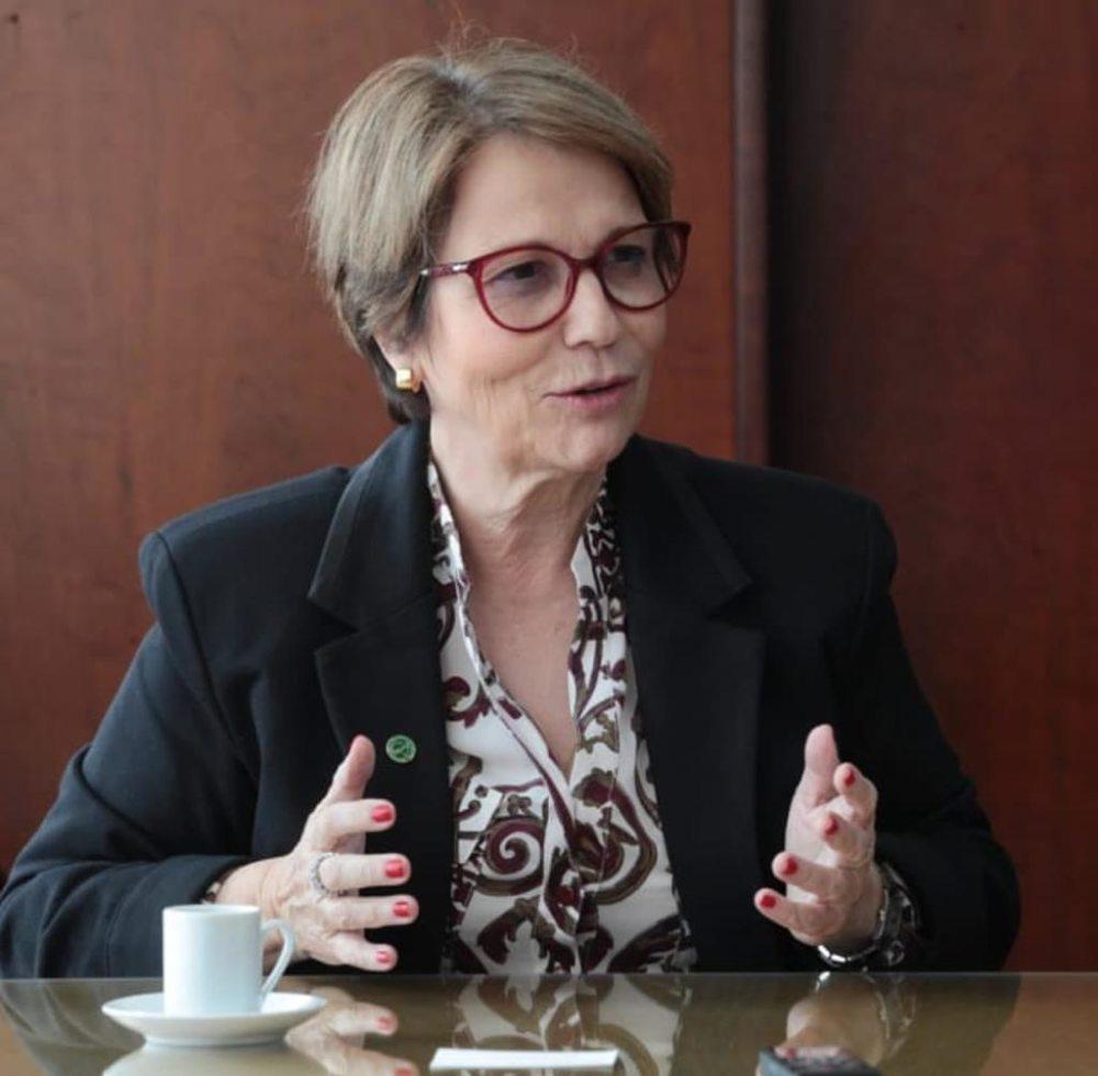 Brasil tem boa expectativa para reabertura dos EUA à carne bovina, diz ministra