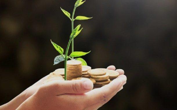 Governo libera R$ 73 milhões para serem aplicados no seguro rural neste e no próximo mês