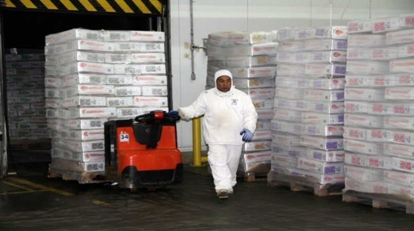 Novos mercados impulsionam aumento das exportações de carne bovina