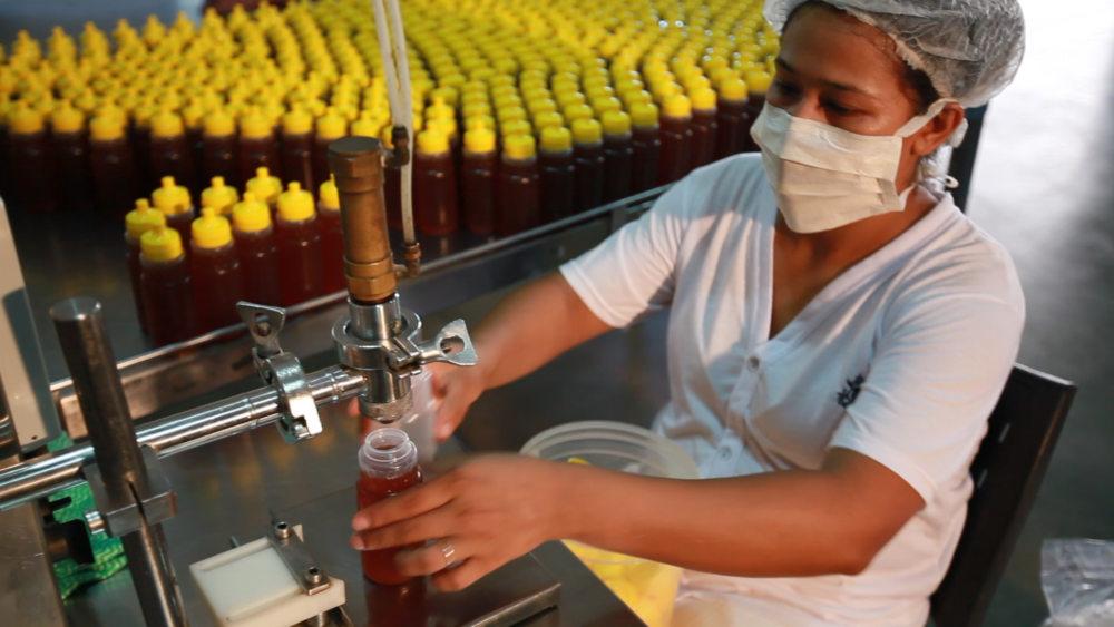 Com mais de mil toneladas de mel produzidas ao ano, MS tem potencial produtivo para investimento no setor