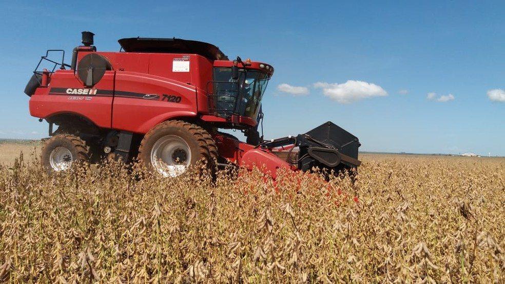 Conab aumenta previsão para safra de grãos a recorde de 240,7 milhões de toneladas em 2018/19