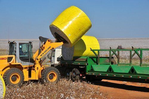 Exportações nacionais crescem 60% em relação a safra passada