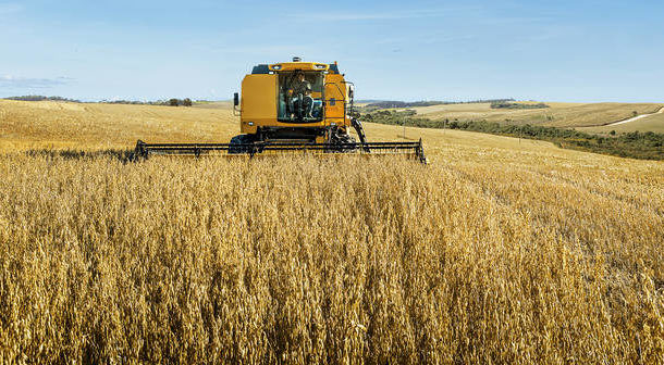 Contratação de crédito rural sobe 4% na safra 2018/2019