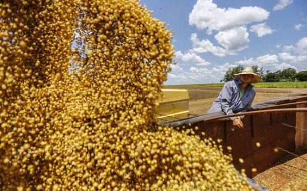 Primeiro levantamento da safra 2019/20 de grãos indica produção de 245 milhões de t