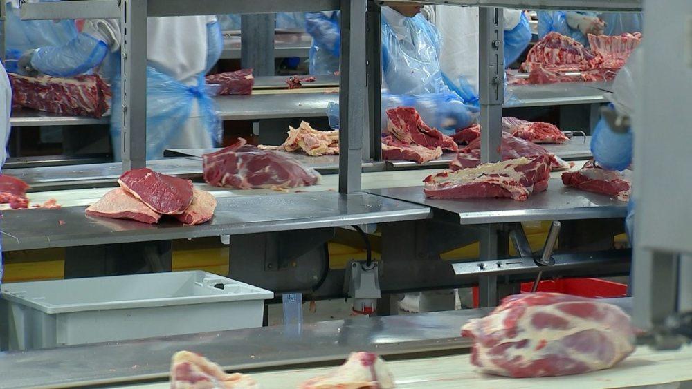 Exportação de carne bovina brasileira sobe 20% até julho