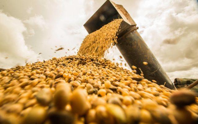 Brasil passa a controlar mais de 50% da exportação de soja