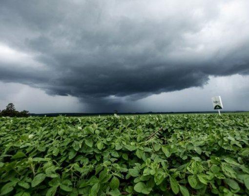Chuvas chegam ao Sudeste, Centro-Oeste e Norte e devem continuar