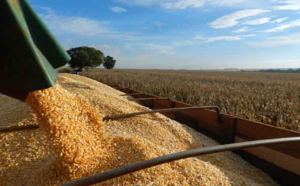Brasil colhe safra de grãos 6,4% maior, diz Conab