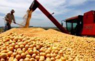 Exportações de soja crescem 37,6% e chegam a 11 milhões de toneladas em março