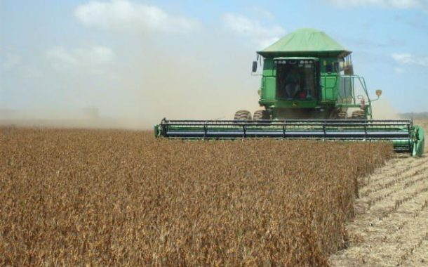 Conab prevê novo recorde para safra brasileira de grãos com 246 milhões de toneladas