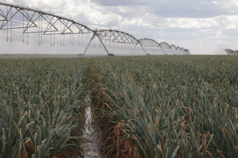 Agricultura 4.0 deve otimizar a agricultura irrigada