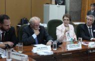 Tereza Cristina abre reunião da Câmara Setorial da Carne Bovina
