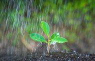 Inmet prevê chuva para os próximos 15 dias no país