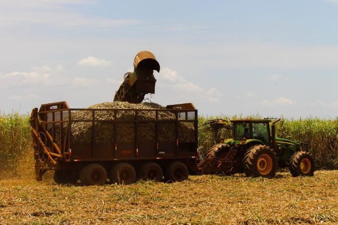 Municípios de MS estão entre as maiores economias agrícolas do País