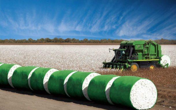 Exportação de algodão é recorde