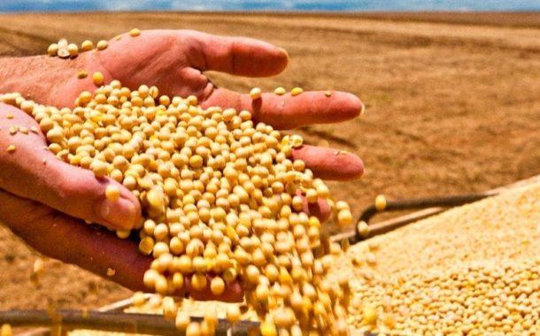 Abiove mantém previsão de produção de soja 2019/20 em 123,7 milhões de toneladas